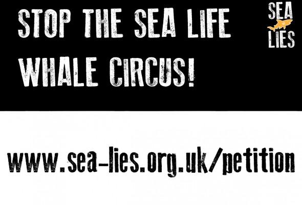SEA LIFE aquariums still can't get story straight on cetacean captivity