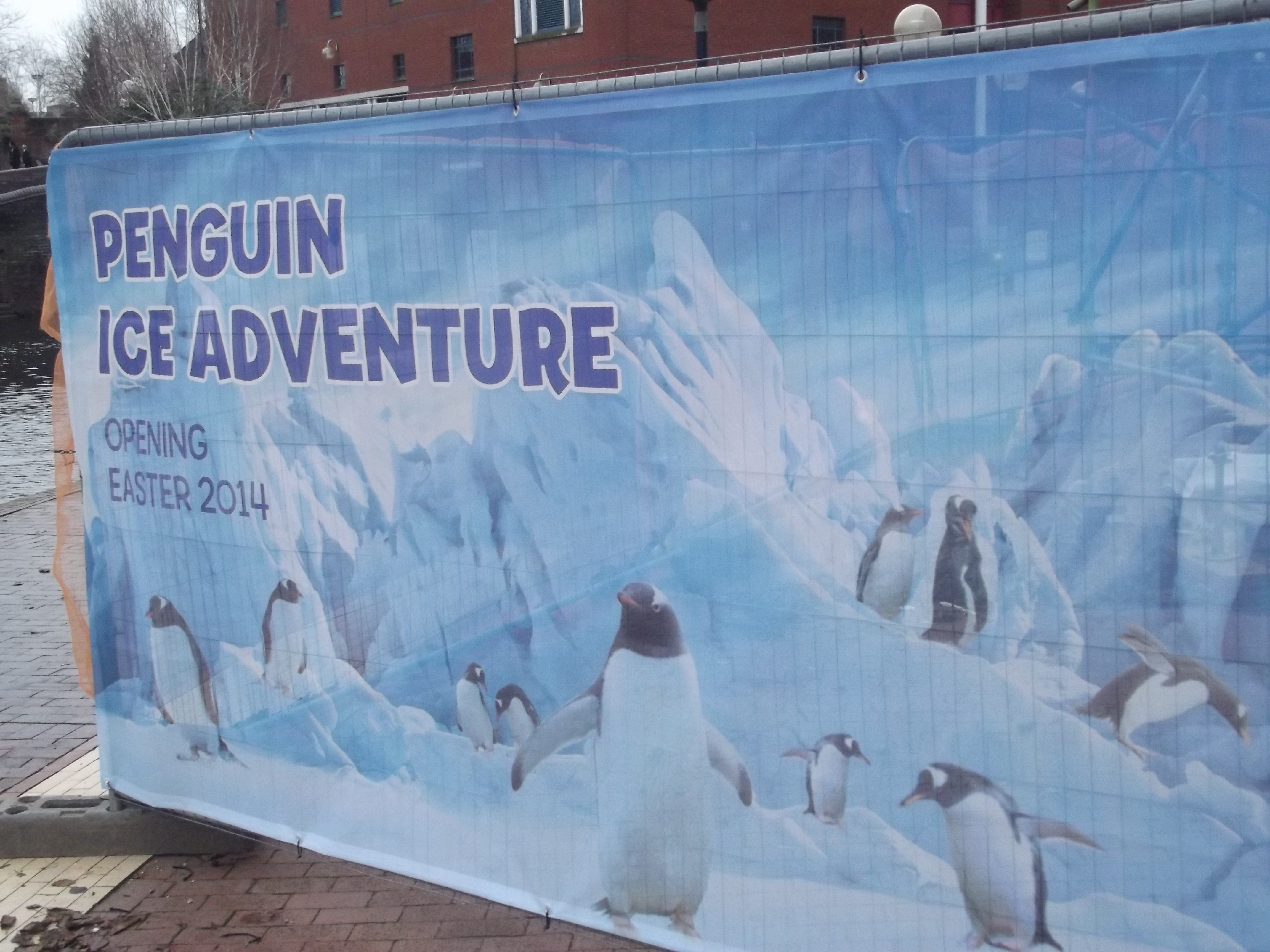 Newly opened penguin exhibit of concern