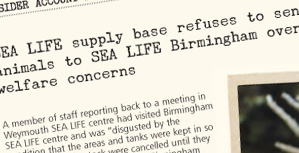Insider account #6: SEA LIFE supply base refuses to send animals to SEA LIFE Birmingham over welfare concerns